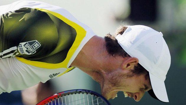 Britský tenista Andy Murray bude na letošním US Open obhajovat titul.