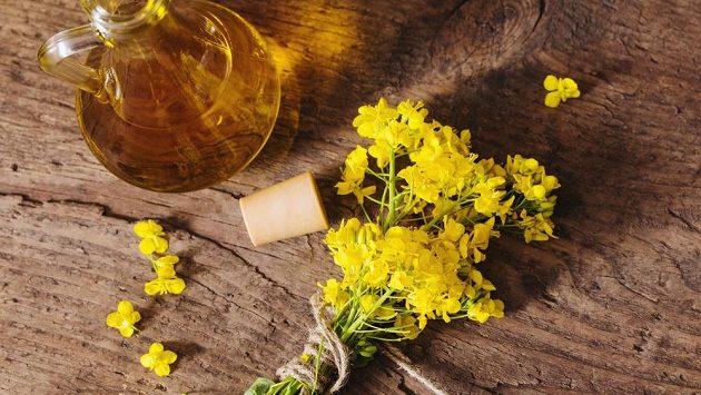 Řepkový olej patří k těm nejtradičnějším.
