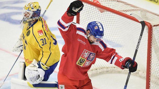 Český útočník Michal Birner se raduje z gólu proti Švédům v Českých Budějovicích.