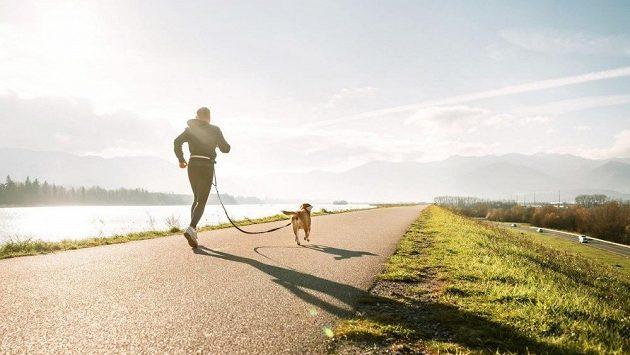 Člověk a pes, canicross, progresivní disciplína, která určitě ještě překvapí.
