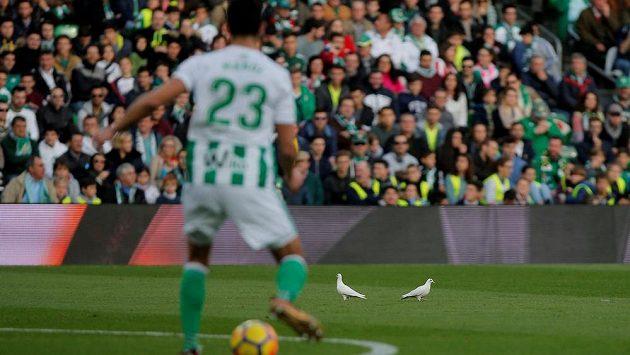 Fotbalisté Betisu Sevilla vyhráli na půdě Málagy.