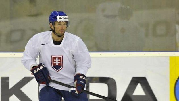 Slovenský hokejista Ľubomír Višňovský