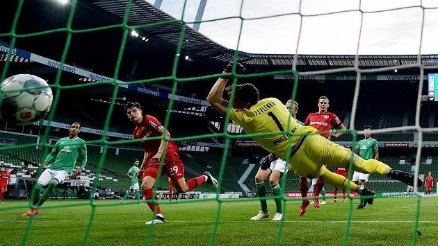 Český brankář Jiří Pavlenka z Brém inkasuje druhý gól v bundesligovém utkání s Leverkusenem.