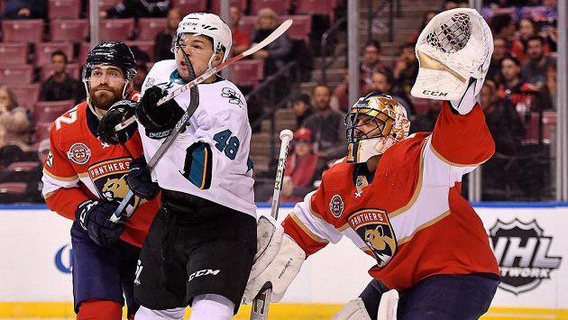 Český útočník Tomáš Hertl se v dresu San Jose v utkání NHL s Floridou neprosadil, brankáře Roberta Luonga (1) nepřekonal.