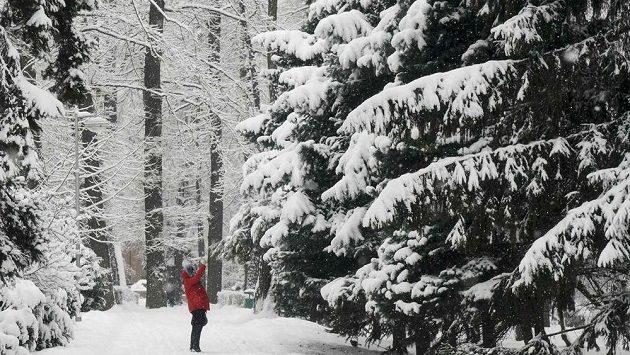 Zimní idyla v Almaty - ilustrační foto.