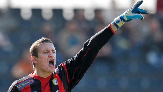 Teplický brankář Tomáš Grigar má na kontě 150 odchytaných ligových zápasů.