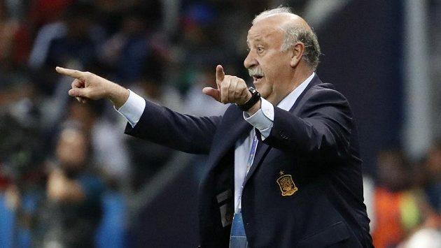 Bude u španělské fotbalové reprezentace pokračovat Vicente del Bosque?