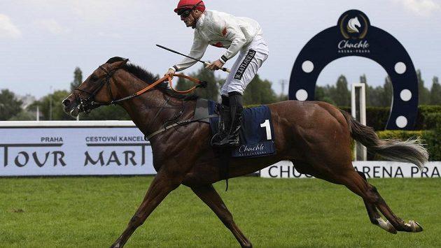Vítězný žokej Milan Zatloukal na koni Rate.