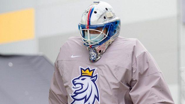hokejový gólman Roman Will (ilustrační foto)