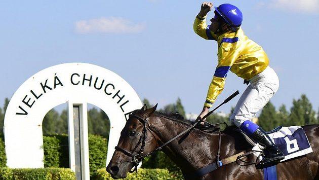 Vítěz závodu St. Leger Jiří Palík na koni Grace of Gracie, který musel být po doběhu utracen.