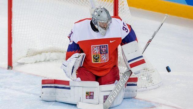 Pavel Francouz zasahuje v utkání se Švýcarskem (ilustrační foto)