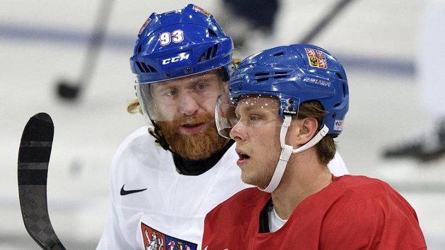 Jakub Voráček (v bílém) a David Pastrňák na tréninku české hokejové reprezentace v Paříži.