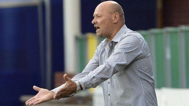 Marně trenér Miroslav Koubek u lavičky gestikuloval a hnal své svěřence na zteč. Mladoboleslavští fotbalisté po prohře s Twente Enschede v Evropské lize končí.