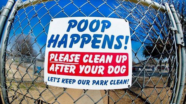 Že budou muset uklízet více než po svém psovi, s tím se nechtějí smířit. (ilustrační foto)