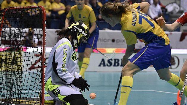 Brankářka ČR Nikola Příleská a Malin Andréasonová ze Švédska v semifinále MS.