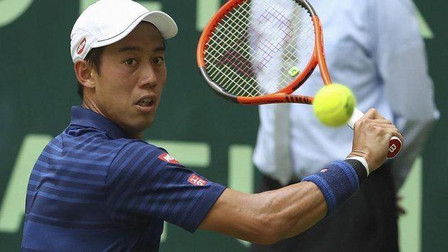 Kei Nišikori na turnaji v Halle.