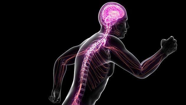 Nezapomínejte na hlavu, ta může výrazně ovlivnit vaše běžecké snažení.