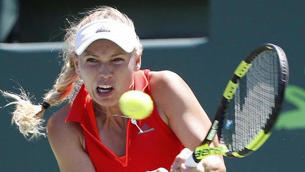 Dánka Caroline Wozniacká na turnaji v Miami.