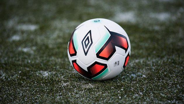 Ilustrační snímek míče.