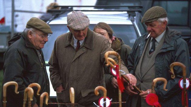 Někdo si na stáří vybírá fešnou hůlku, někdo světový rekord, který by překonal. (ilustrační foto)
