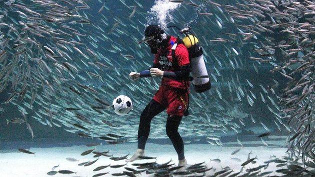 To tady ještě nebylo. Potápěč fandící jihokorejskému týmu si v akváriu v Soulu vzal na pomoc k fotbalové exhibici propagující MS sardinky... Korejci mají ve skupině Rusko, Belgii a Alžírsko.