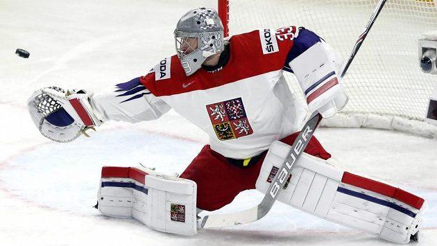 Gólman Pavel Francouz při utkání s Běloruskem.
