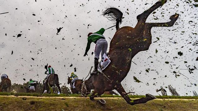 Žokej Jan Kratochvíl padá s koňem Sottovento na Taxisově příkopu.
