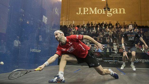 Německý squashita Simon Rösner je osmým hráčem světa. Přesto si přijede zahrát s amatéryn do Ostravy.