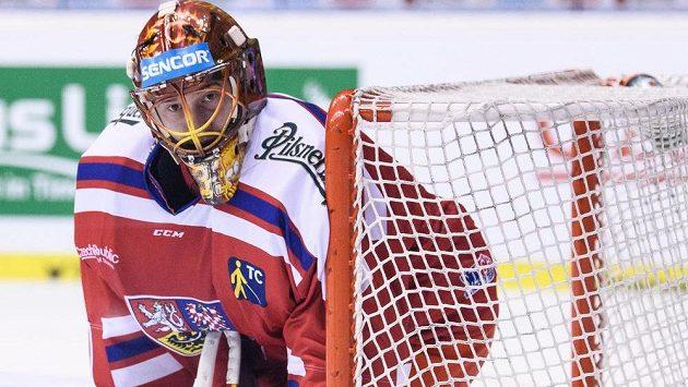 Brankář David Rittich v dresu české hokejové reprezentace.