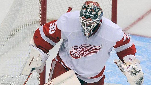 Brankář Detroitu Red Wings Jonas Gustavsson.