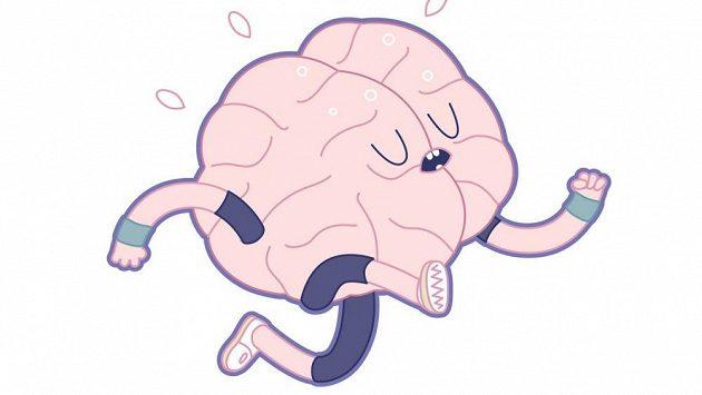 Aby vám mozek neutekl...
