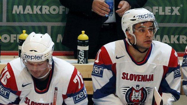 Slovinští hokejisté Rok Pajič (vlevo) a Bostjan Golčič.