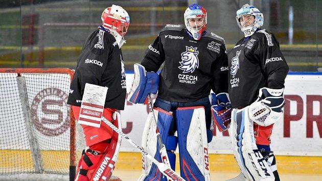 Zleva brankáři Šimon Hrubec, Patrik Bartošák a Roman Will.