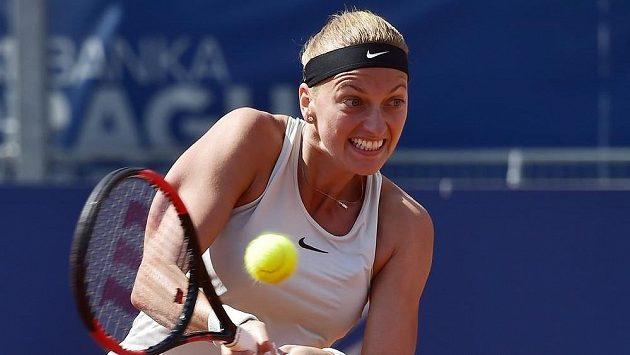 Petra Kvitová v utkání proti Nataliji Vichljancevové z Ruska.