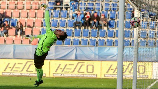 Brankář Aleš Hruška z Příbrami nezabránil vítěznému gólu.