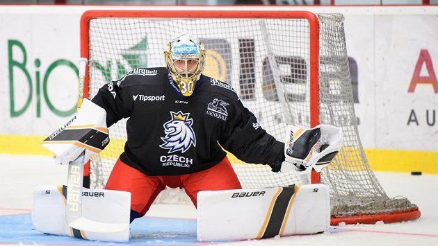 Brankář Daniel Vladař během tréninku v rámci letního kempu hokejové reprezentace.