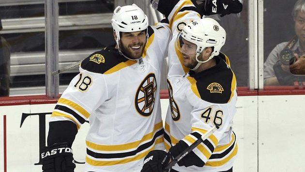 Útočník Bostonu David Krejčí (vpravo) oslavuje se spoluhráčem Nathanem Hortonem svůj gól proti Pittsburghu.