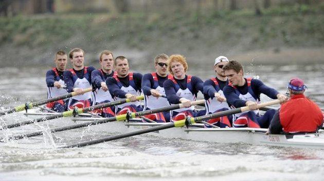 Čeští veslaři při závodě na Temži.