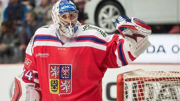 Brankář Petr Mrázek během utkání v Českých Budějovicích.