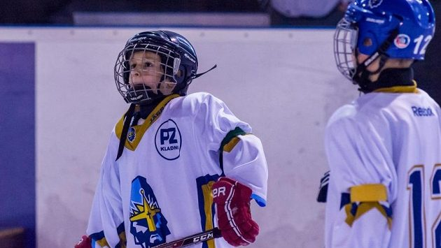Kde bude český hokej za pár let?