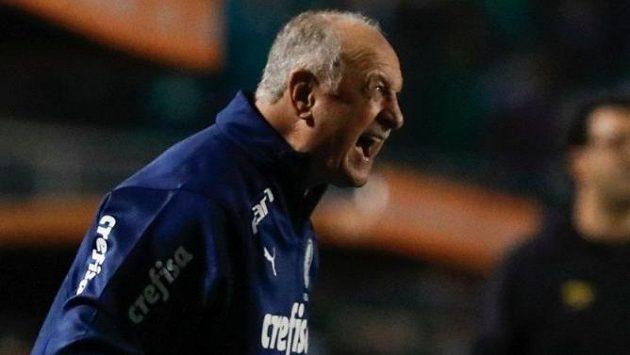 Luiz Felipe Scolari má pomoci zachránit slavný a zadlužený klub Cruzeiro