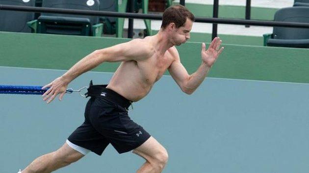 Andy Murray věří v úspěšný návrat na kurty