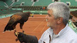 Sokol na Roland Garros