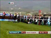 Kůň skončil mimo trať