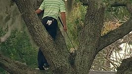 Sergio Garcia musel vyšplhat na strom, aby zahrál úder