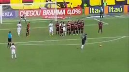 Parádní gól v podání brazilského brankáře Rogéria Ceniho.