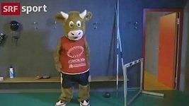 Kráva Cooly se stala atletkou