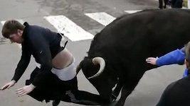 Běh před býky může být opravdu nebezpečný.