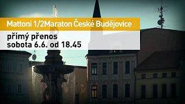 Půlmaraton České Budějovice 2015