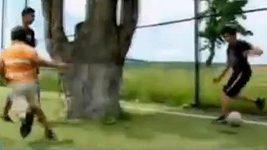 Hřiště s dubem v Rumunsku